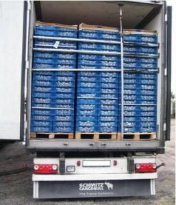 17 тонн шампиньонов из Польши везли в Россию под видом македонских